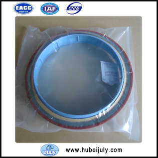 new-dcec-cummins-oil-seal-3925529-cover-image