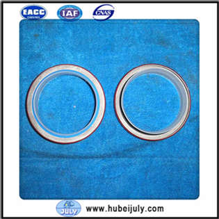 new-other-oil-seal-3968562-cover-image