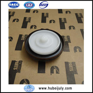 new-other-oil-seal-5265266-cover-image