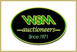 western-sales-management-1-icon