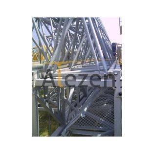 2006-saez-s52-13775104