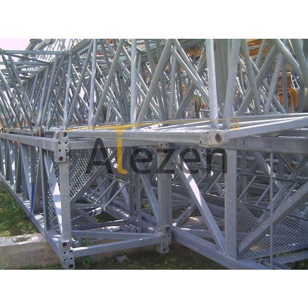 2006-saez-s52-13775107